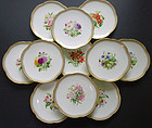 Set of 10 George Jones English Botanical Plates