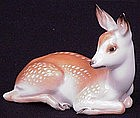 Unusual Rosenthal Fawn � Deer
