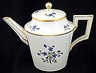Elegant Antique KPM Berlin Tea Pot