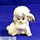 Josef Puppy Dog
