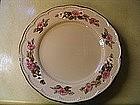 Franciscan Rosette Dinner Plate