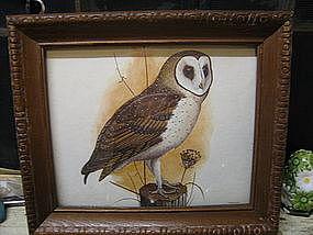 Barn Owl Print