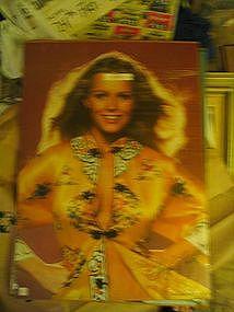 Vintage Cheryl Ladd Poster