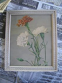 Vintage Carnation Print