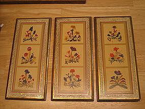 Vintage Italian Botanical Prints