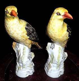 Lovely KPM pair yellow bird Meissen style
