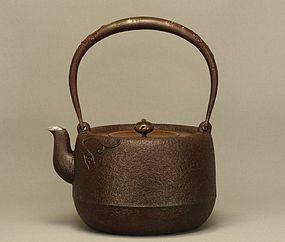 Japanese Tetsubin Cast Iron Teapot Kettle
