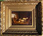 Sheep, Goats and Chickens-Pair: Franz Van Severdonck