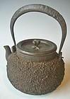 Antique Japanese Tetsubin Iron Tea Kettle, C.1925