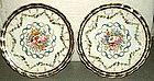 Beautiful Pair of Handpainted English Plates; c 1820