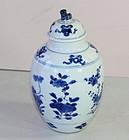 Chinese B&W Porcelain Foo Dog top Vase, Kangxi period