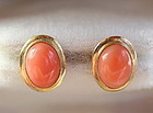 Pair Natural Coral Cabochon with 14K Gold Earrings