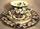 Royal Albert TRILLIUM Prov. Flowers CUP & SAUCER