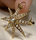 Victorian 14k Yellow Gold Starburst Seed Pearls Pendant Brooch or Pin