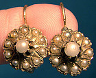 Great 14K PEARLS VICTORIAN EARRINGS c1880-90