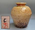 Shigaraki Tsubo by Sakai Nao
