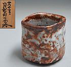 Tsukigata Nahiko Contemporary Oni Shino Chawan
