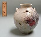 Sakuchi Ensen 9 Nanban Hisshoku Chatsubo Tea Leaf Jar