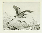 "Winifred Austen, etching, ""Heron Making Off"""