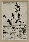 "Frank Benson, etching, ""Pintails Passing,"" 1930"
