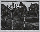 "Herbert Ogden Waters, Wood Engraving, ""Atwood Pond"""