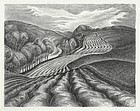 "Wanda Gag, lithograph, ""Ploughed Fields"" 1936"