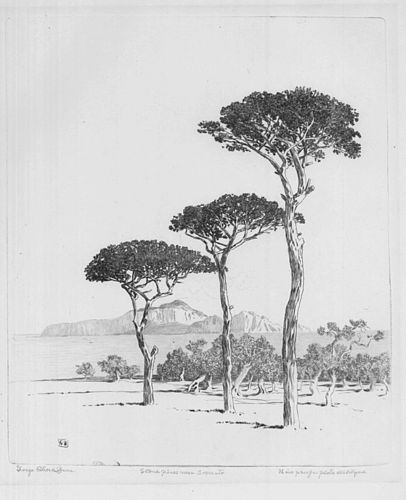 George Elbert Burr, etching, Stone Pines near Sorrento, 1920