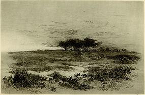 "Edith Loring Getchell Pierce, ""Solitude, Pecks' Beach"""