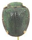 Beetle set in 14k Rose Gold - Stick Pin