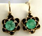 Emerald Buttercup Earrings in 14k Rose Gold