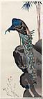 Japanese Kachoe Woodblock Print Yamaguchi Soken Peacock
