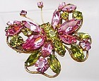 Regency Butterfly Broach - Pink and Lime Green