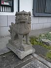 Japan magnificent pair stone Shi Shi Komainu 18c.