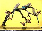 AUSTRIAN BRONZE PARAKEETS / GROUPING ON BRANCHES