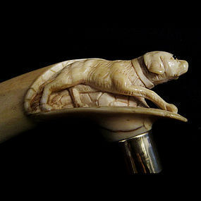 Ivory Handle Dog Walking Stick