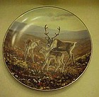 On the Trail plate 6 by Joan Sharrock Arctic collection