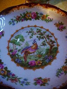 Royal Albert Chelsea Bird maroon  trim cup and saucer