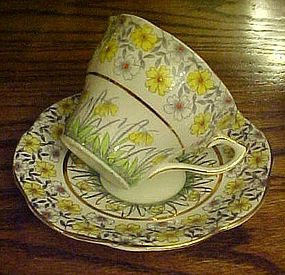 Rosina bone China cup and saucer yellow crocus flower