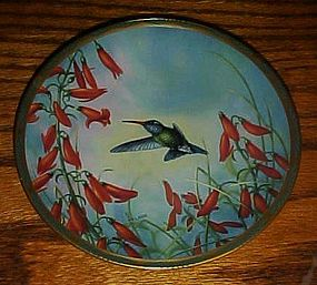 Broad Billed Hummingbird  & Penstemon plate C Nelson