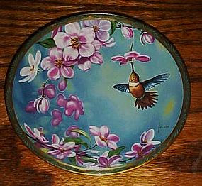 Rufous Hummingbird and Apple blossoms plate C Nelson