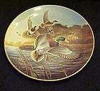 Lynn Kaatz Mallards at Sunrise  Duck collector plate