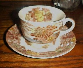Nasco Mountain Woodland cup and saucer transferware