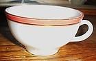 Vintage Pyrex Flamingo ware cup