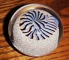 Rick Satava nautilus shell paperweight signed and dated