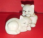 Playful white persian kittens salt and pepper shakers