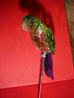 "Beautiful 7"" crystal faceted colorful parrot on perch"
