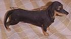 Realistic Black & tan Male Dachshund dog ornament