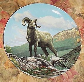 Dominion China Wild and Free Canadas big game plate Bighorned sheep
