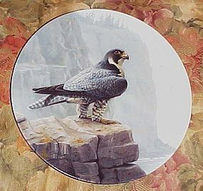 Knowlws  Peregrine Falcon plate from the Majestic birds series