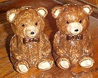 Big Brown Teddy Bear salt and pepper shaker set
